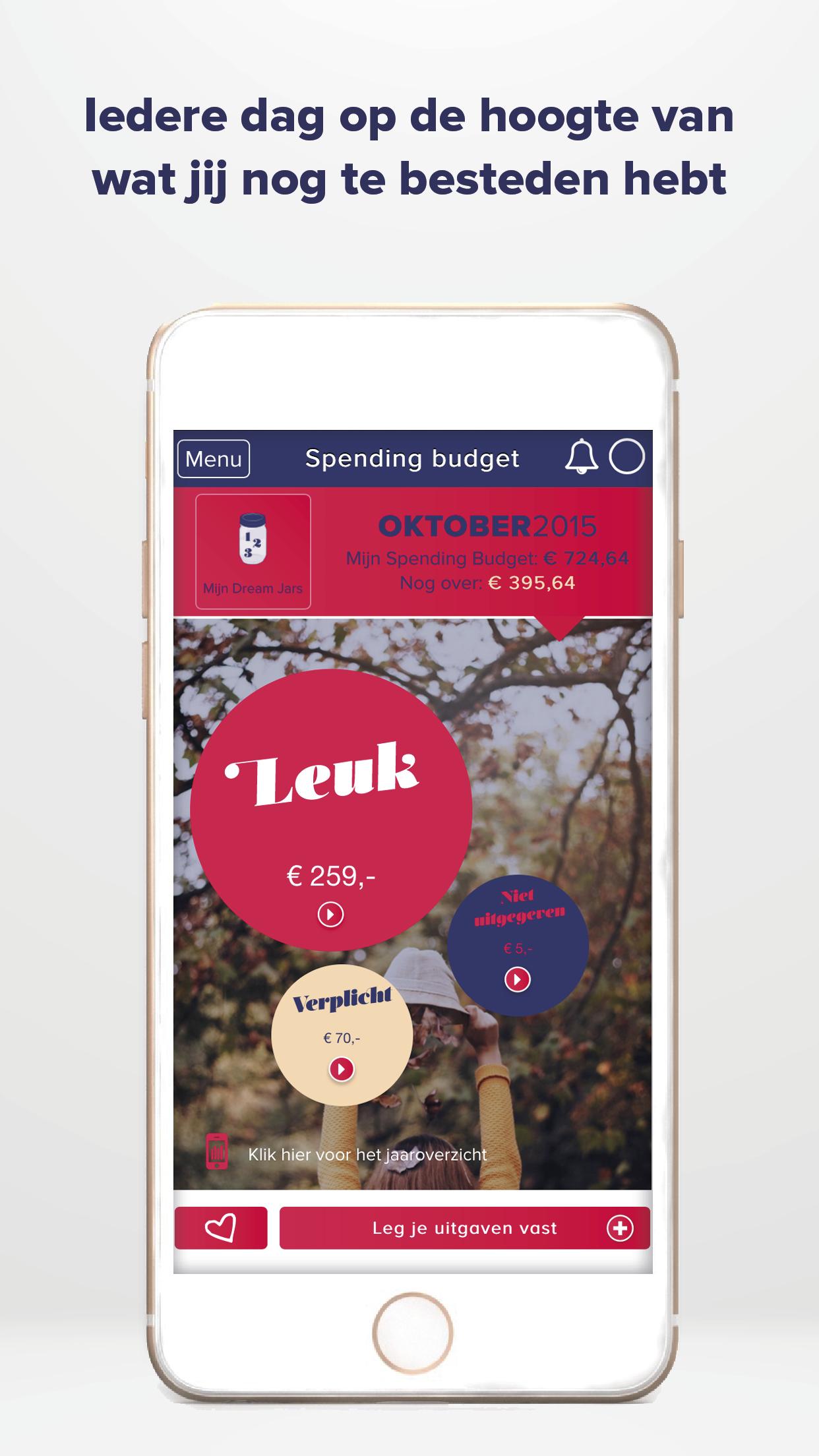Budgettool App